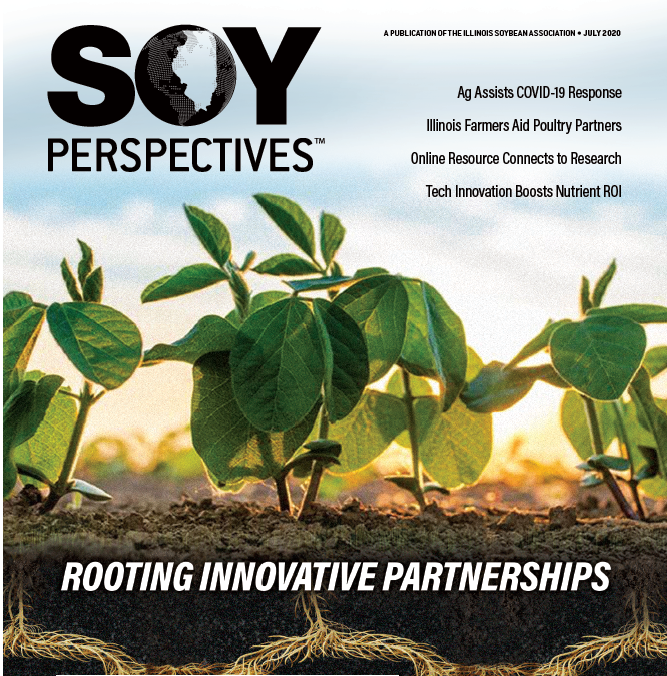Soy Perspectives July 2020